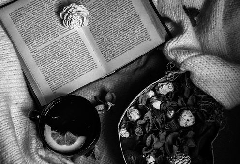 Image by Valerie Elash
