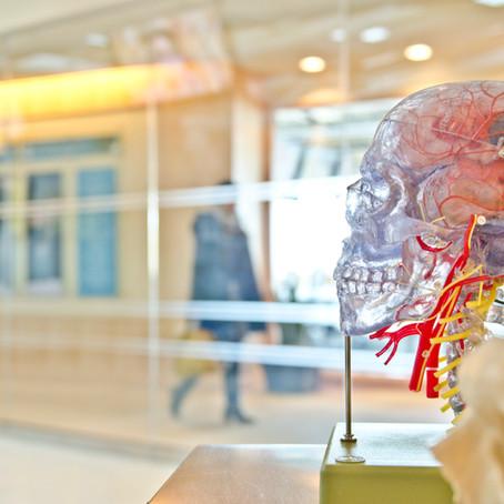 Kan Beyin Bariyeri