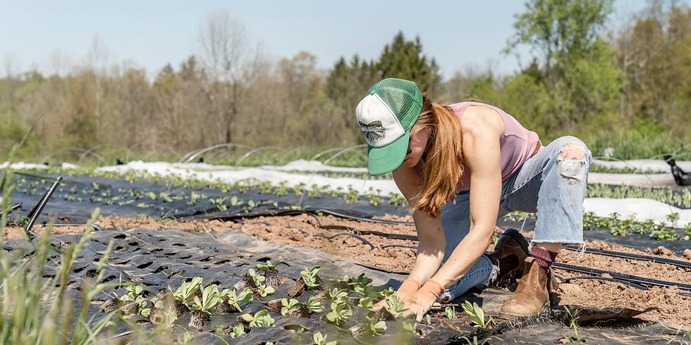 WirtschaftsWoche – Solidarische Landwirtschaft