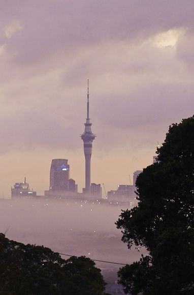 Property Management in Auckland