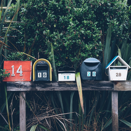 B2B Newsletters Are All the Rage
