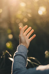 Hand raising into sunlight.
