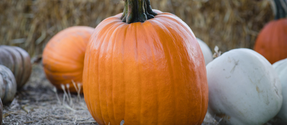 Positive Thanksgiving Activity: How to Make a Thankful Pumpkin