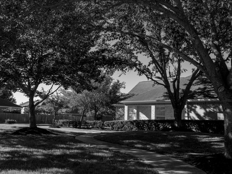 Crow Court by Jeff Bacon