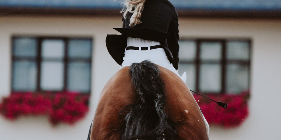 Friday 10th September Unaffiliated Showjumping