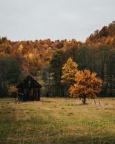 Image by Tamas Tuzes-Katai