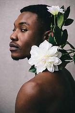 Image by Raphael Nast