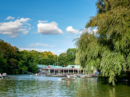 Central Park, JK pt. 3
