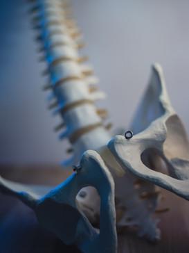 Osteopatia nelle problematiche pelviche femminili