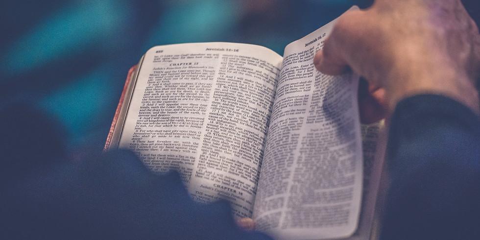 New Adult Christian Formation Program