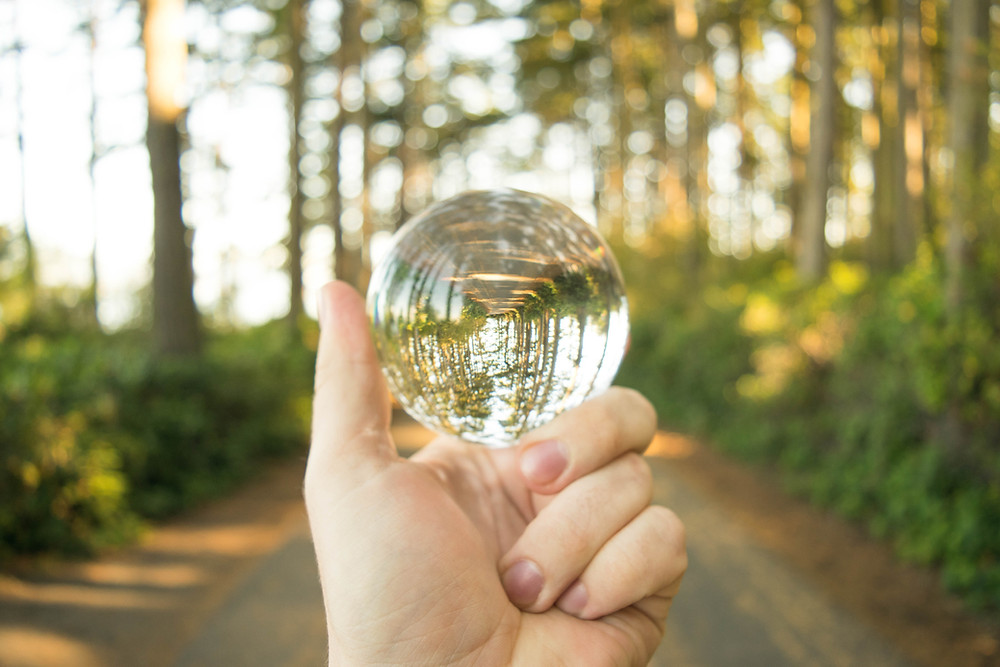 holding clear crystal ball daylight in forest