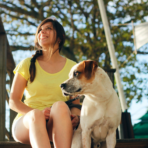 Top 5 Tips for a Safe Dog Days of Summer