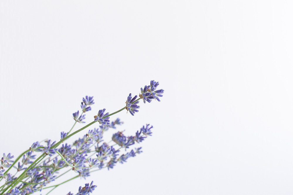 Lavender as part of a nighttime ritual