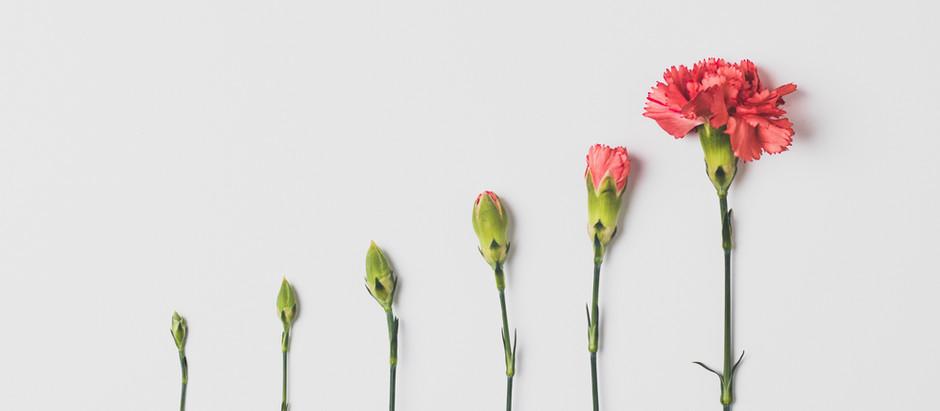 5 rutinas poderosas que cambiarán tu vida