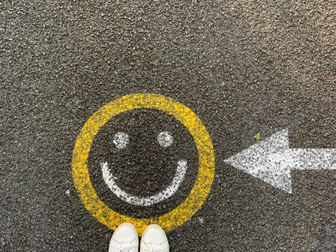 The Happiness Strategy