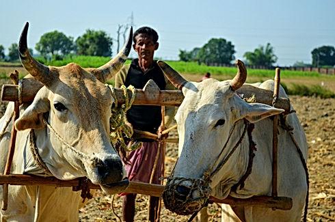 Image by Varun Verma