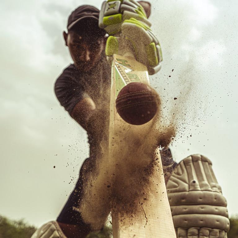 Annual Cricket Match