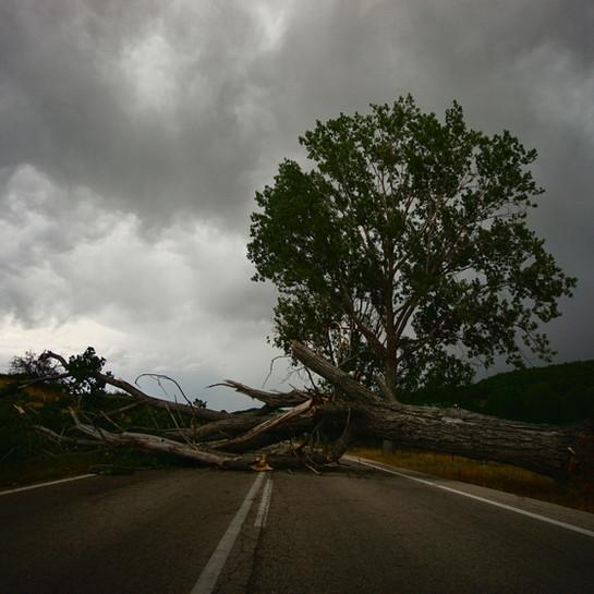 Storm Bella zorgt voor overlast in Limburg