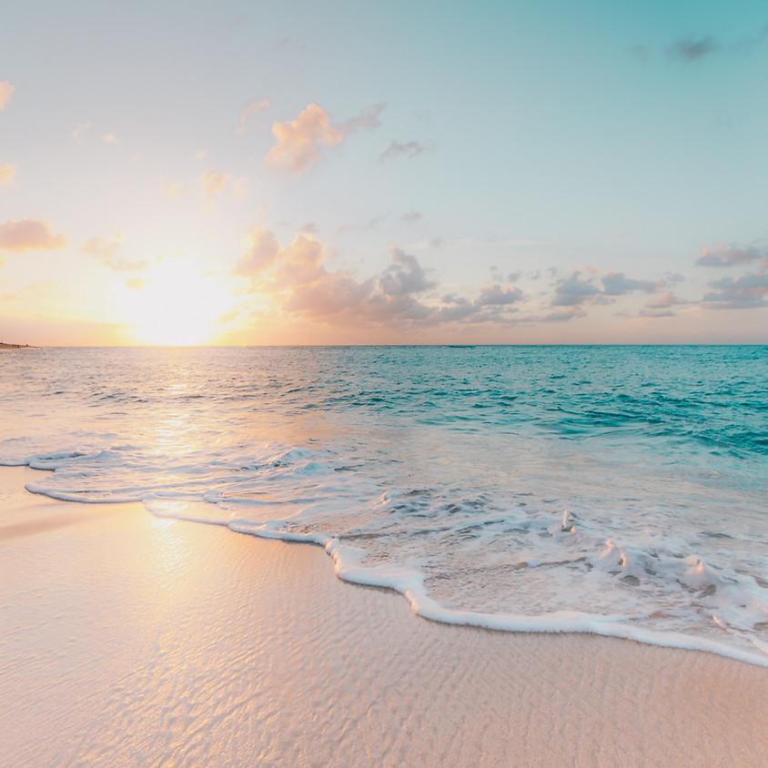 The Seventeenth Annual Hal Lipton Retreat at the (Virtual) Beach