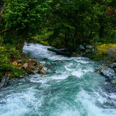 Poetry Corner: Down by the Waterhole