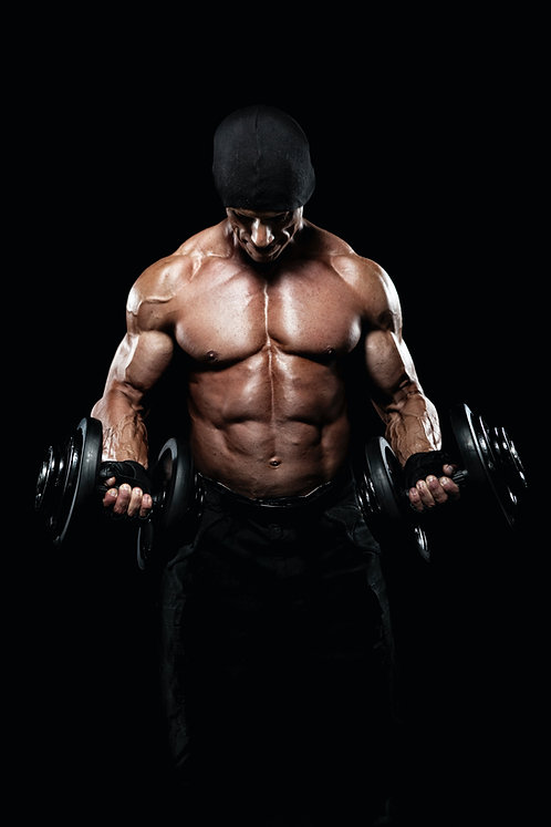 The Gym Rat Program (Weightlifting Program)