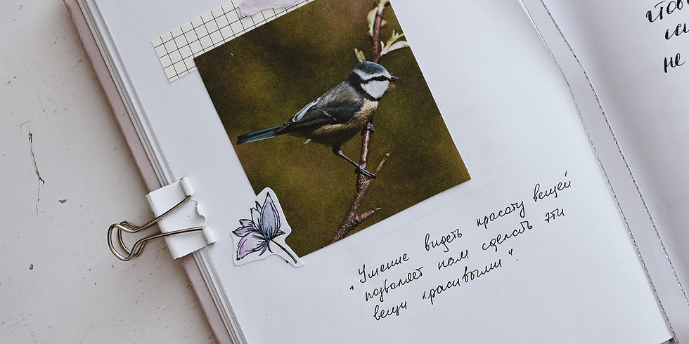 Beginning to Bird: Keeping a Bird Journal (Adult Program)