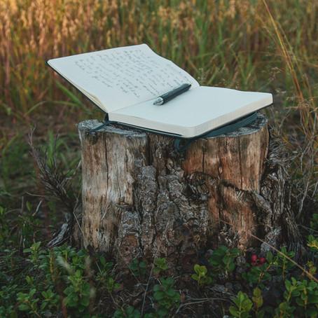 O que a poesia pode ensinar sobre a boa escrita?