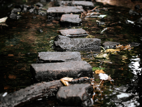 Virtual 70th Stepping Stones Picnic