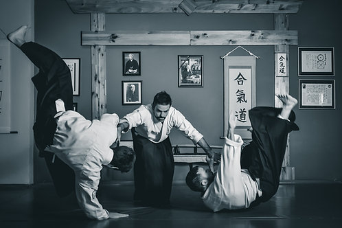 Aikido (Monthly Fee)