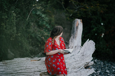 Image by Priscilla Du Preez
