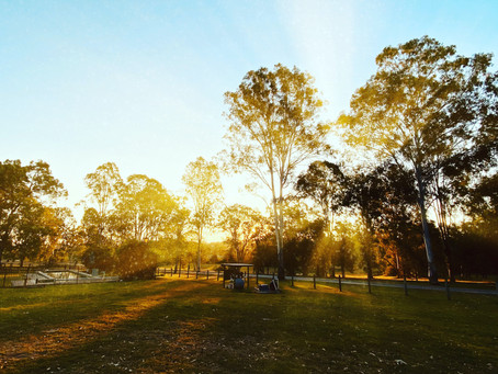 Not into nature? Here's why you still need parks.