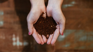 What does Compostable mean?