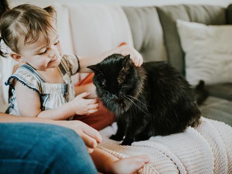 Mindfulness for Parents & Children