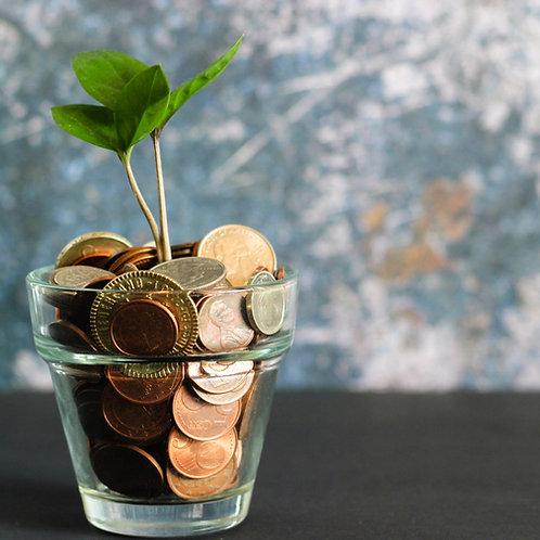 Il denaro come parametro oggettivo della evoluzione materiale-spirituale
