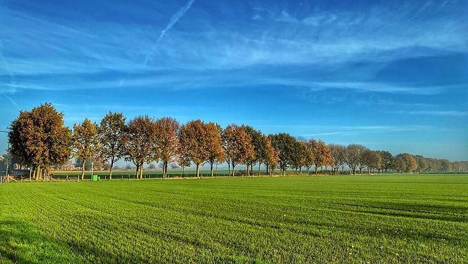62 procent minder bezoekers in Vlaanderen door Corona