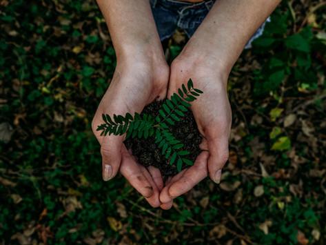 Wie Nachhaltigkeit zu einem glücklichen Leben führt
