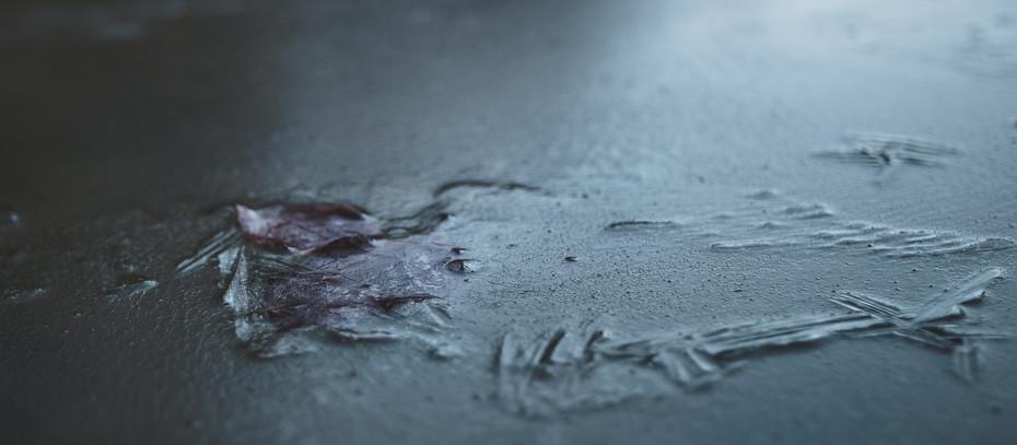 Öykü- Gizem Uysalcan- Ölü Soğuk