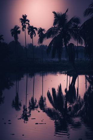 Image by Jeet dutta