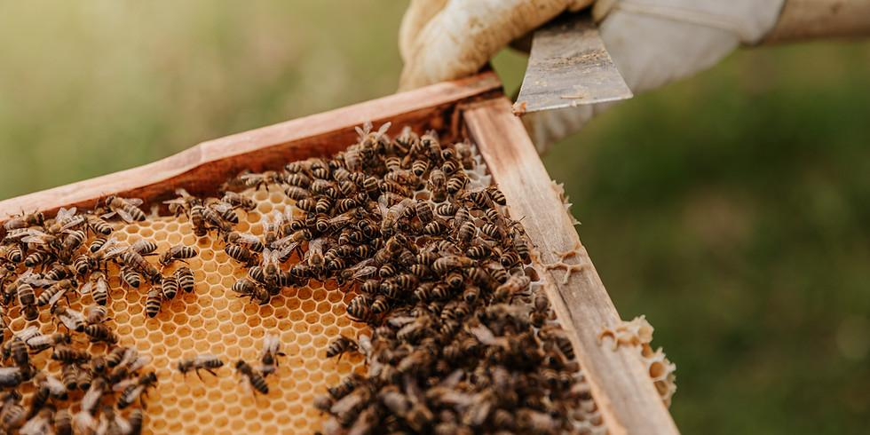 JULY 2021 Beekeepers Forum