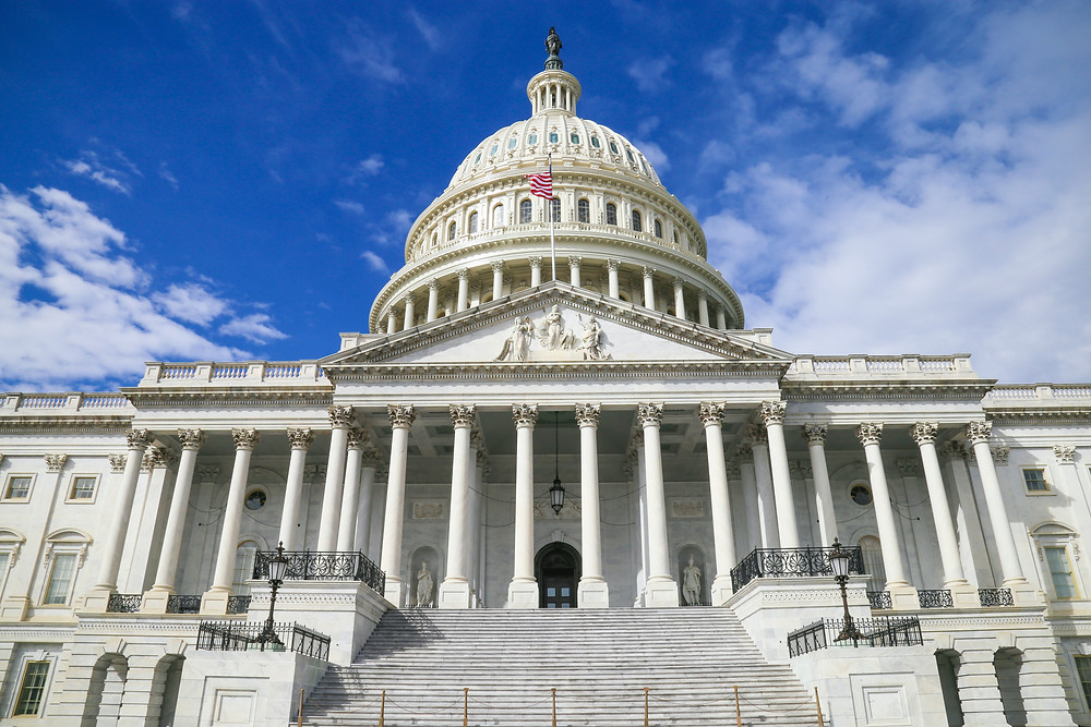 United States Congress in Capitol Building, Washington DC
