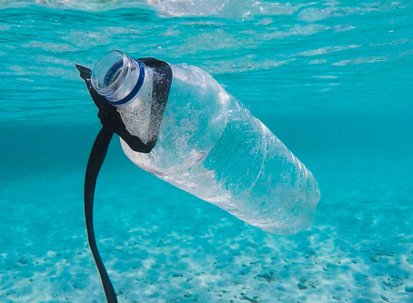UNEP Webinar Series on Single Use Plastic Products and LCA - October 2020