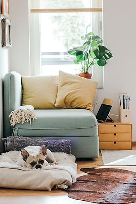 Homes for Rent Indianapolis Available for Lease Pet Friendly