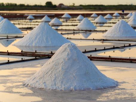 Salt-based vs Salt-free water softeners, what's better?
