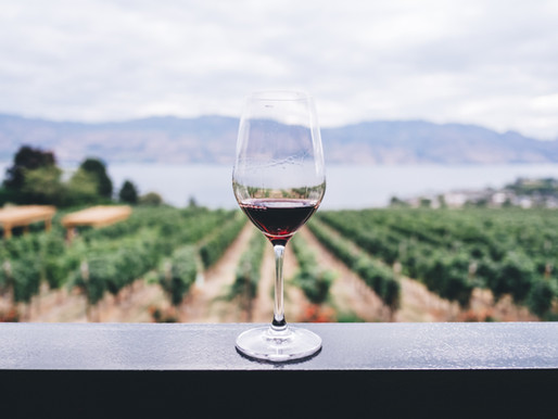 Scorched, Parched and Now Uninsurable: Climate Change Hits Wine Country