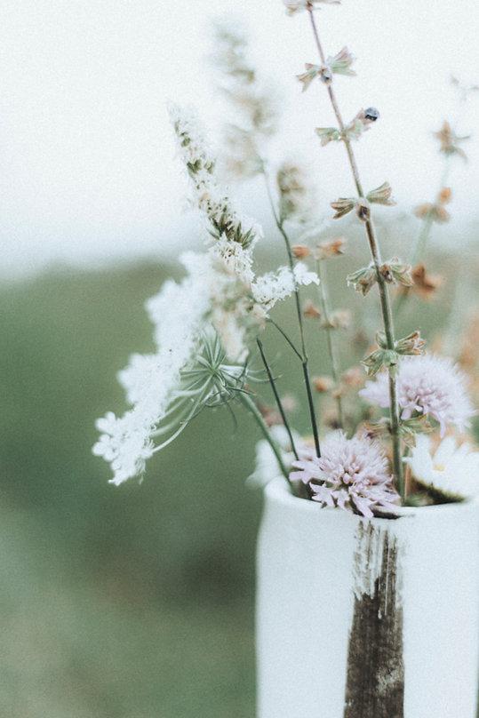 Image by Simona Sergi