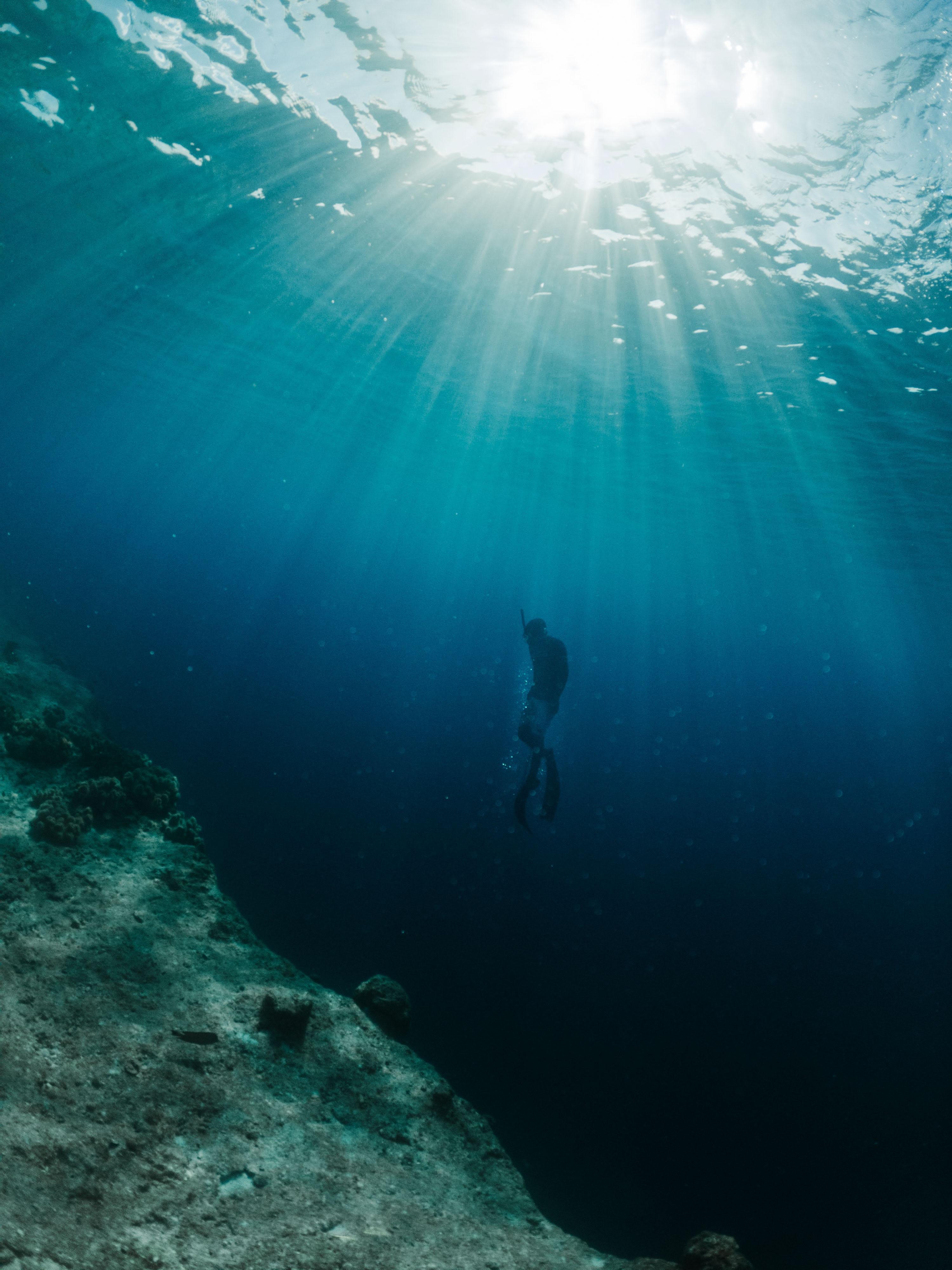 Deep Dive Tarot Reading 🤿