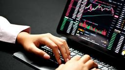 Alogrand Defies Market Decline