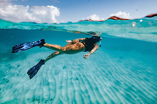 Key West Tour & Snorkeling with Unlimited Drinks from Miami Beach for $147