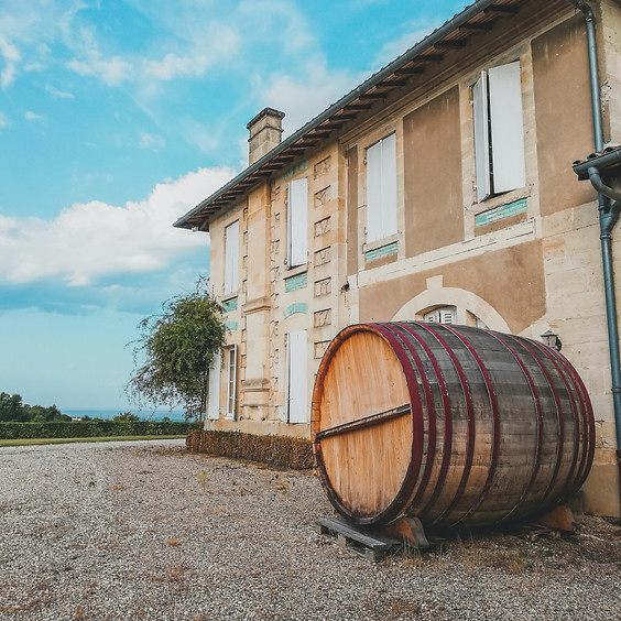 Visiting Wine Maker, Michele D' Aprix