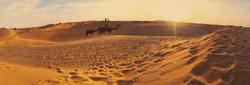 Desert Jaisalmer